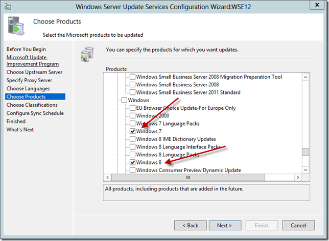 Enable WSUS on Server 2012 Essentials Config Wizard 11a